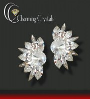 Charming Crystals_1116-stella-ohrstecker_3